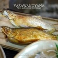 矢沢のヤナ / Yazawanoyana