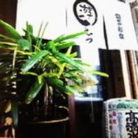 旬菜和食 游えつ / Syunsaiwasyoku Yuetsu