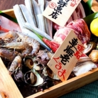 焼鳥・炉端 日本酒ダイニング 雄 / Yakitori Robata Nihonshu Dining YU