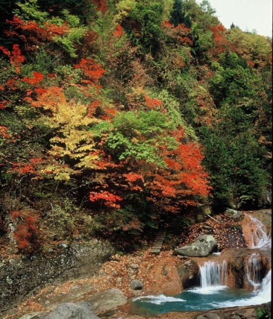 横谷峡(横谷渓谷)