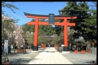 Kuil Hirano-jinja / 平野 神社