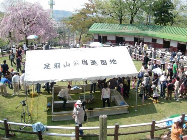 아수와 야마 유원지 / 足 羽山 公園 遊 園地