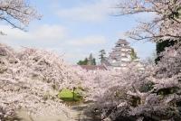 Tsuruga-jō / 鶴 ヶ 城