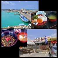 都屋漁港 定置網漁体験プログラム / Toya fishing port Set net fishing experience program