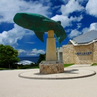 沖縄美ら海水族館 / The Okinawa Churaumi Aquarium