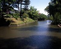 สวน Tsurugaokajoshi / 鶴ヶ岡城址公園 (鶴岡公園)