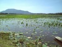 ラムサール条約湿地「佐潟」