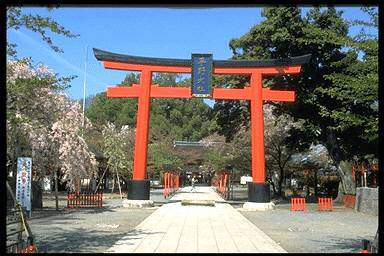 Hirano-jinja Shrine /平野神社