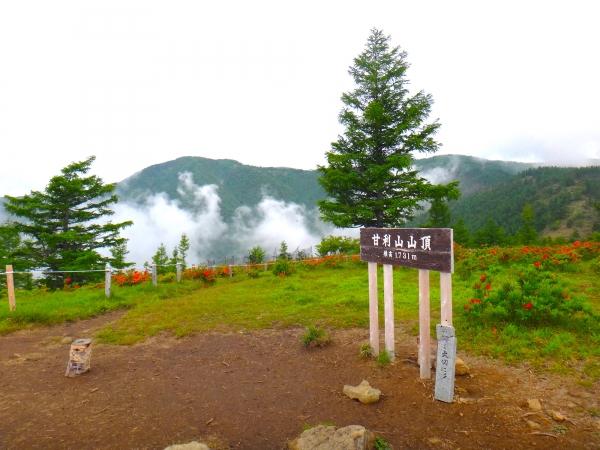 Amariyama /甘利山