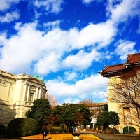 東京国立博物館 / The Tokyo National Museum
