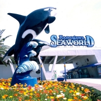 鴨川シーワールド / Kamogawa Sea World