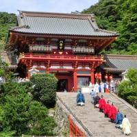 鶴岡八幡宮 / Tsurugaoka Hachimangū