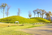 Yanaidanu-no-Oyama Kofun / 柳 田 布 尾 山 公園 古墳 館