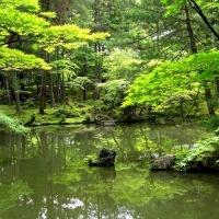 西芳寺 / Saiho-ji