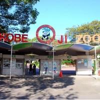神戸市立王子動物園 / Kobe City Oji Zoo