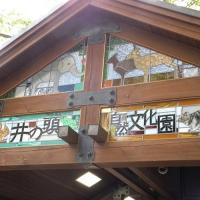 井の頭恩賜公園 / Inokashira Park