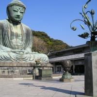 高徳院 / Kōtoku-in