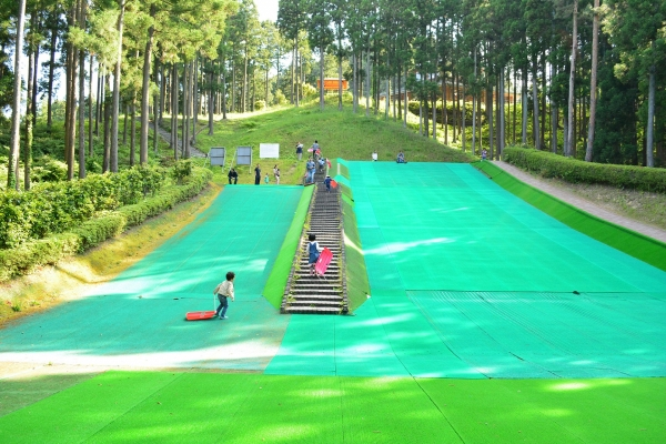 大亀山森林公園