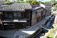 Shukunegi / 宿根 宿根