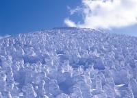 Zao rime / 蔵王の樹氷