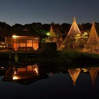 白鳥庭園 / Shirotori teien (Garden)