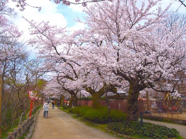 Takaokakojo Park / 高 高 古城 古城