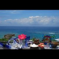 Gala青い海 / Gala blue ocean