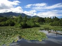Estanque Imori-ike / い も り 池