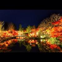 禅林寺 永観堂 / Zenrin-ji Eikan-do