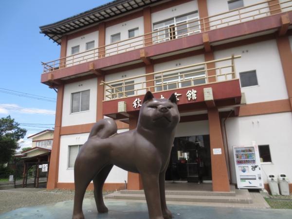 秋田犬会館/Akita Dog Museum