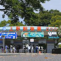 恩賜上野動物園 / The Ueno Zoo
