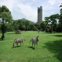 豊橋総合動植物公園(のんほいパーク)/Toyohashi Generale Parco botanico